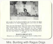 Mrs. Bunting with Ragus Dogs