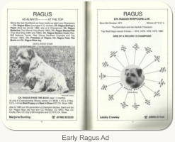Early Ragus Ad