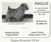 Ragus Browned Off Ad