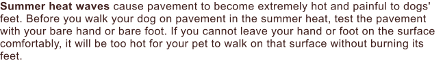 Summer heat waves cause pavement to become extremely hot and painful to dogs' feet. Before you walk your dog on pavement in the summer heat, test the pavement with your bare hand or bare foot. If you cannot leave your hand or foot on the surface comfortably, it will be too hot for your pet to walk on that surface without burning its feet.
