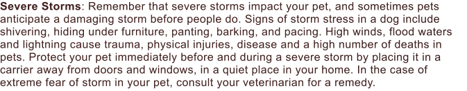Severe Storms: Remember that severe storms impact your pet, and sometimes pets anticipate a damaging storm before people do. Signs of storm stress in a dog include shivering, hiding under furniture, panting, barking, and pacing. High winds, flood waters and lightning cause trauma, physical injuries, disease and a high number of deaths in pets. Protect your pet immediately before and during a severe storm by placing it in a carrier away from doors and windows, in a quiet place in your home. In the case of extreme fear of storm in your pet, consult your veterinarian for a remedy.